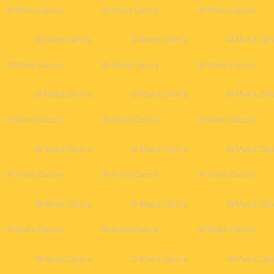 Yellow Sun Solid for Australian Animals