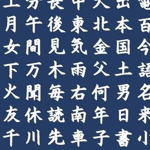 Kanji / Hànzì Characters on Navy // Small