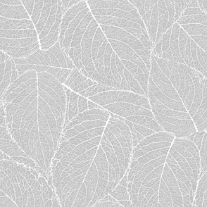 Light Grey Thrones Leaves