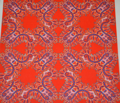 Rfeathery_bright_red_kaleidoscope_comment_655855_thumb