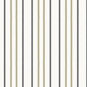Piñata Stripe