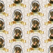Rbetter_life_wired_dachshund_shop_thumb