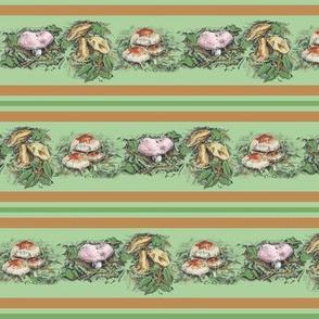 Mushroom Stripe