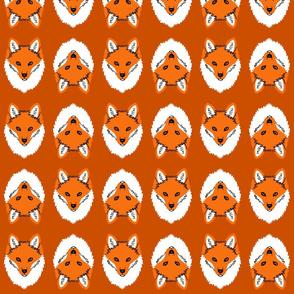 Mr_Fox