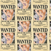 Nami's wanted poster from One Piece