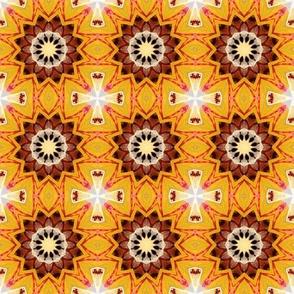 Cody Kaleidoscope - 1