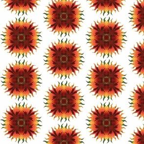Kaleidoscope Floral-Oranges (800 pixels)