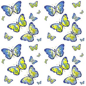 Butterfly Fairies Dream