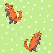 Rrred_panda-spoonflower_shop_thumb