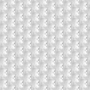 White Plumeria 9663-1
