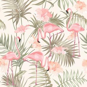 Flamingos_Hawwaii_