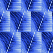 Palm Cyanotype