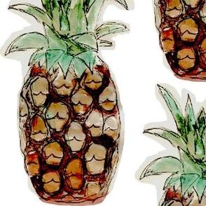 Pineapple friend
