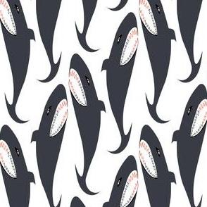 Shark #1