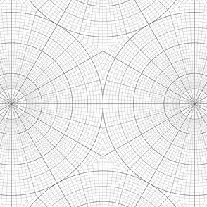 polar graph : portrait hexagon