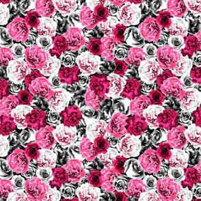 julie_lamb_photo_rose_pink