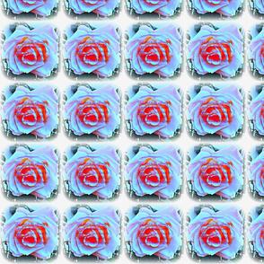 3 D Roses w/Serenity Prayer
