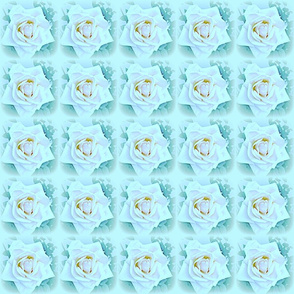 Faded Roses in Teal & Peach