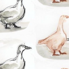 2 geese a walking