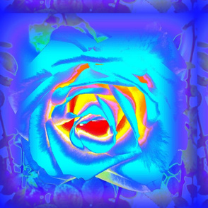 3 D Roses in Blue & Purple