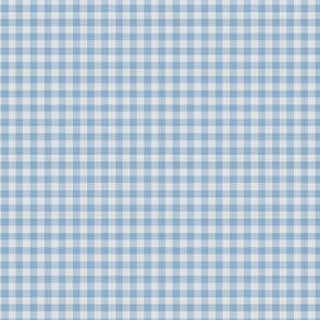 Light Blue Gingham Check