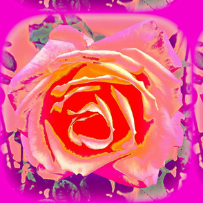 3 D Rose III