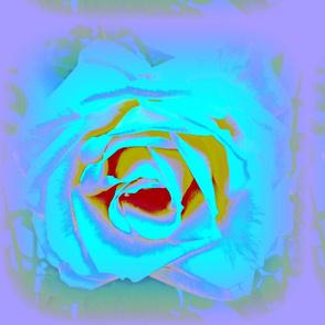 3 D Rose IV