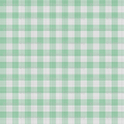 Light Green Gingham Check