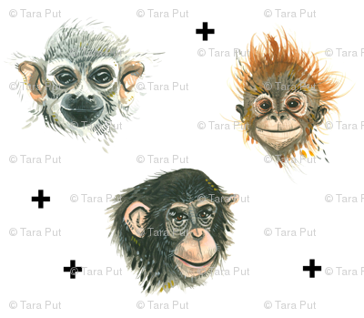 Happy Apes (Smaller Scale)