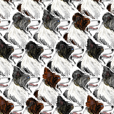Border Collies fabric by eclectic_house on Spoonflower - custom fabric