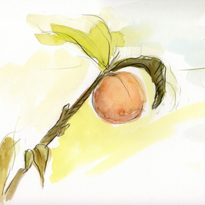 peach watercolor