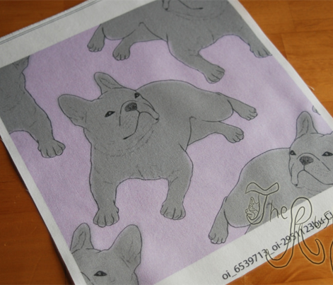 Tinted French Bulldog sketch - purple