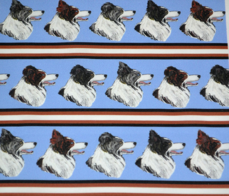 Rborder_collie_stripe_comment_660373_preview
