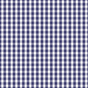 USA Flag Blue and White Gingham Checks