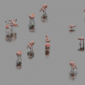 Flamingoes in Grey - Soft