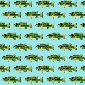 Largemouth Bass in blue