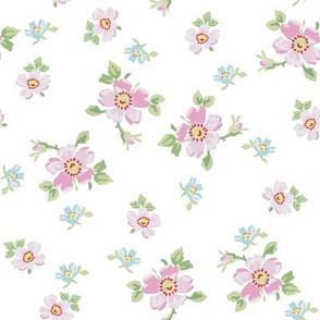 Wee Blommor pastel