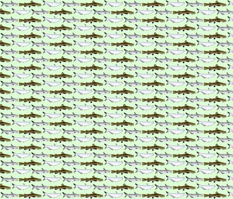 3 North American Catfish fabric by combatfish on Spoonflower - custom fabric