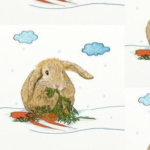 Cute Rabbit Eating Carrot