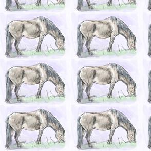 Custom Pony Grazing 8.5 by 5.5