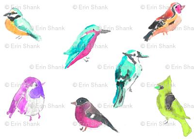 birds in pinks