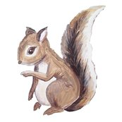 Rsquirrel_fabric_2_shop_thumb