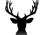Rbuck1_ed_thumb