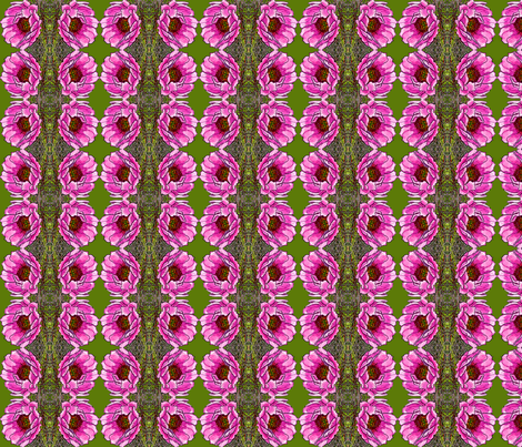 cactusrose2004 fabric by leroyj on Spoonflower - custom fabric