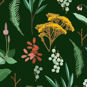 herbal_study_green