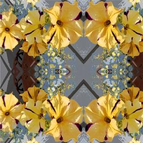 Yellow Garden Petunias large