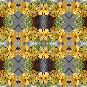 garden yellow petunias small