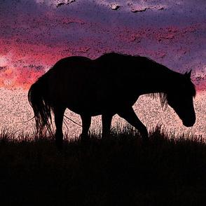 Horse - lampshade silk