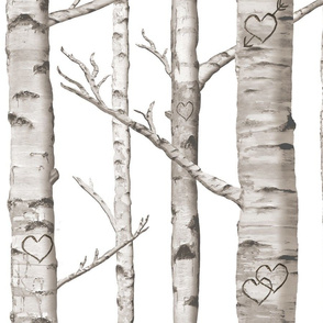 Birch Forest in Love