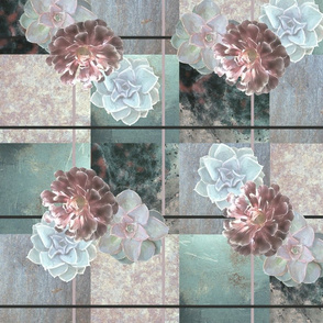 Succulents_2_Rose_and_Mint_